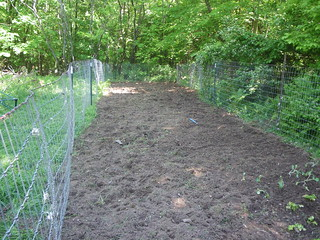 Temp fencing on the left