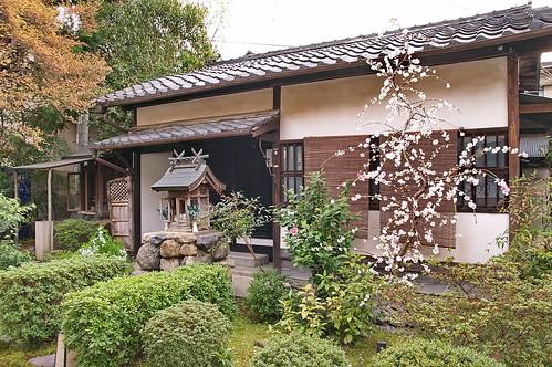 【写真】2013 桜 : 閑臥庵/2021-07-16/IMGP9636