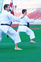individual sports(1.0), contact sport(1.0), sports(1.0), combat sport(1.0), martial arts(1.0), karate(1.0), taekkyeon(1.0), japanese martial arts(1.0),