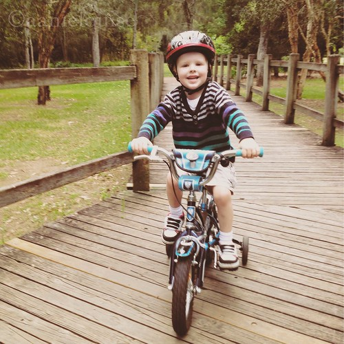 active family bike track