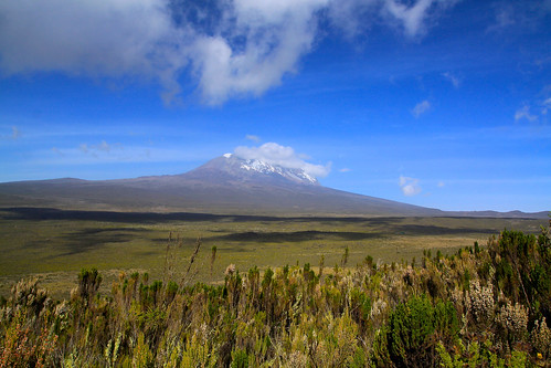 10190556785 335dfb2f87 Our trip up Kilimanjaro was far more beautiful and rewarding than I ever could have imagined