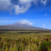 10190556785 335dfb2f87 s Our trip up Kilimanjaro was far more beautiful and rewarding than I ever could have imagined