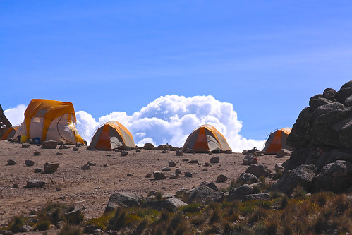 10190731295 711b15ddde Our trip up Kilimanjaro was far more beautiful and rewarding than I ever could have imagined