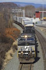 NS 9507 CP Rose, Altoona, PA