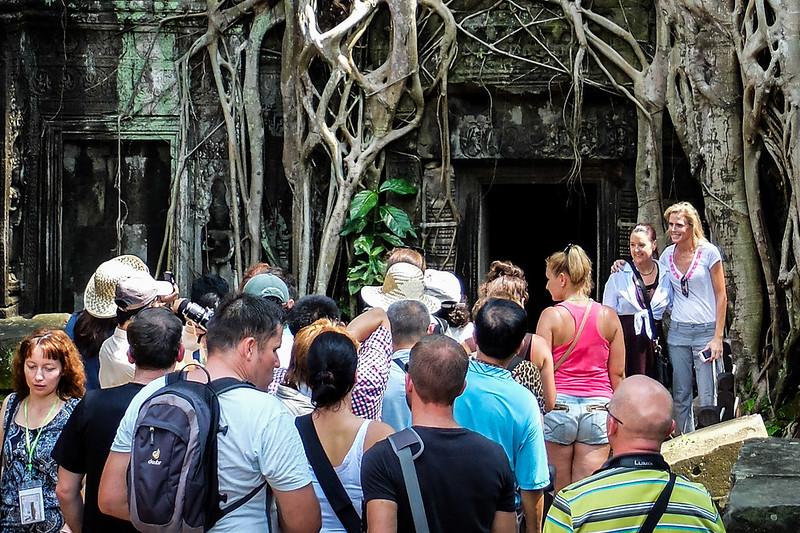 Tomb Raider tree in Ta Prohm