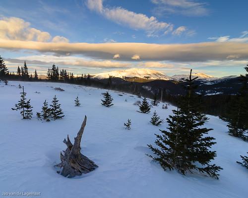 trees sunset usa sun mountain snow mountains tree clouds landscape colorado unitedstates northamerica breckenridge tenmilerange franciescabin