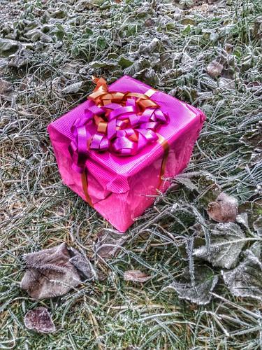 pretty parcel