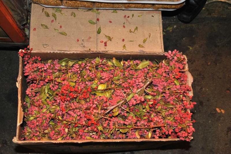 167 frutos para el arroz en Massahd (26)