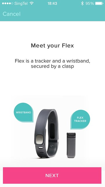 Fitbit Flex iOS App - Step 1