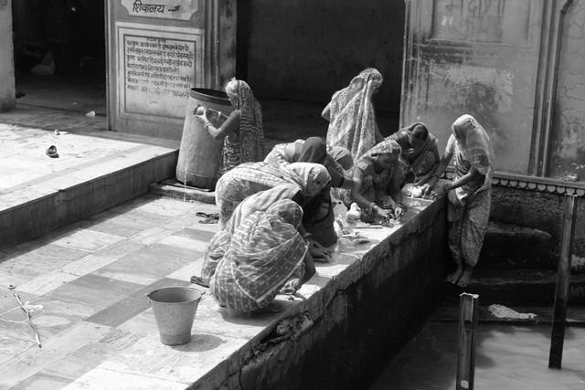 Templo de los monos de Jaipur Galwar Bagh, el templo de los Monos de Jaipur - 13185600273 45bb3e2a6f z - Galwar Bagh, el templo de los Monos de Jaipur