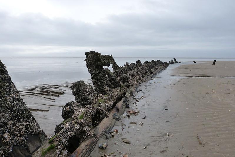 P1070026 - Shipwreck, Cefn Sidan