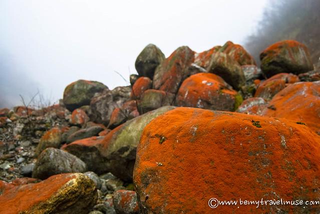 red rocks maxi