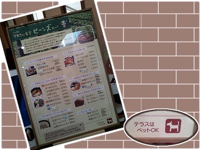20150530_RSKobuchisawa_640