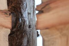 Whitney Museum - Wood