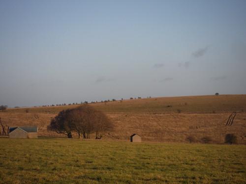 Ruined Farm Buildings on Salisbury Plain, off American Road