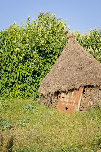 Outbuilding, Galawdewos, Ethiopia, 2011