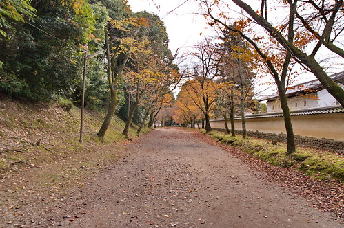 【写真】2012 紅葉 : 醍醐寺/2020-08-07/IMGP6839