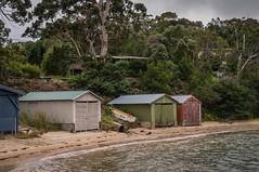 Coles Bay Freycinet National Park-13