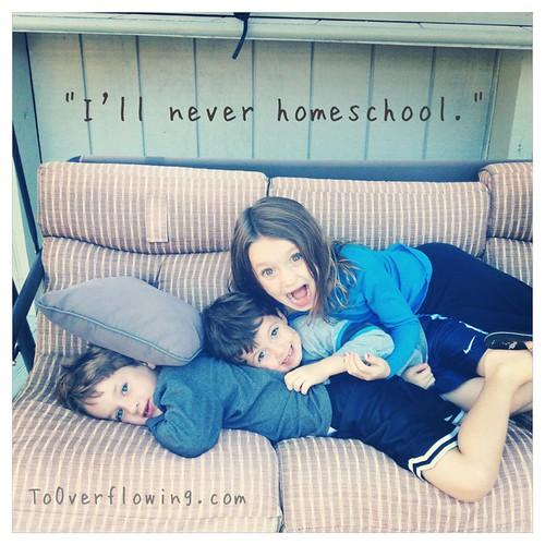 I'll never...