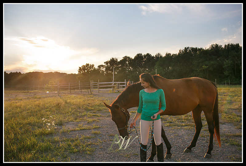 Equestrian horse riding senior portrait photographer Rochester NY Penfield Pittsford Mendon High School Andrew Welsh