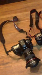 Lost 5D Mark III+16-35mm lens, Please Help