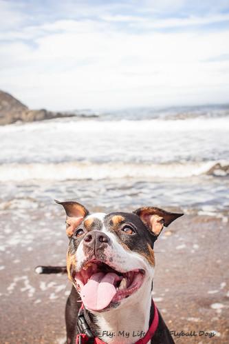 Beach Trip-8565