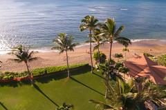 Maui 2013-30.jpg