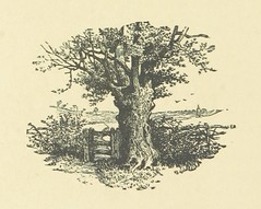 """British Library digitised image from page 136 of """"Voices of the Wind: stories and allegories"""""""