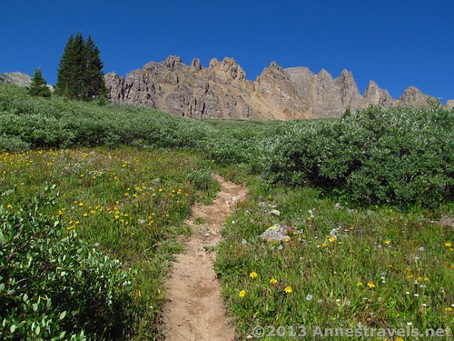 A first view of the spires on Cathedral Peak on the Electric Pass Trail, White River National Forest, Colorado
