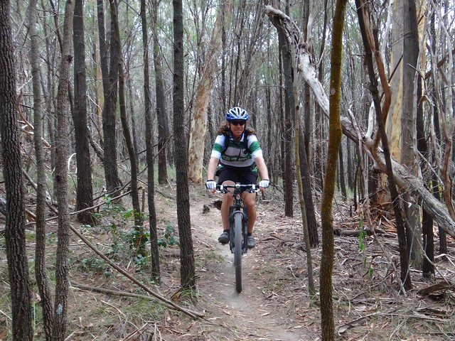 Bayview Single Tracks