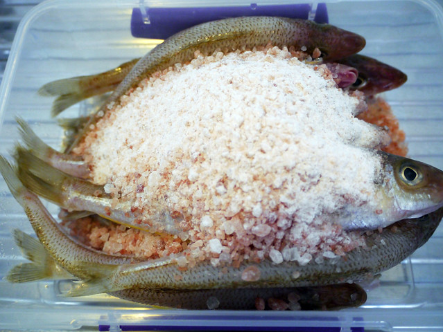 How to make padaek - Lao fermented fish sauce recipe #10