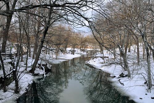 newyorkcity snow nature sunny rivers bronxzoo snowday winterlandscapes natureinthecity bronxriver naturewalks nikond7000