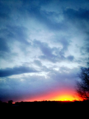 county morning sky sun nature sunrise wilson wilsoncounty colorvibefilter