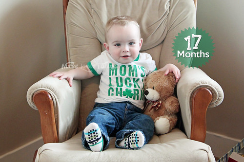 Ethan is 17 Months Old!