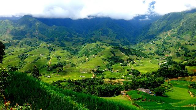 Friday Postcard: Rice Hills in Sapa