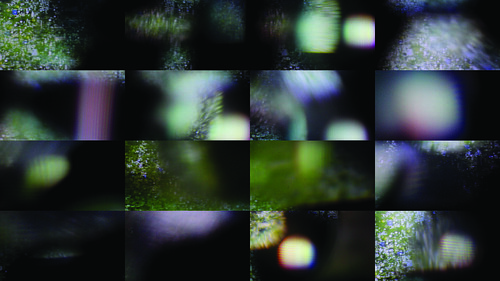 Field Cataracts Re-Projection [Stills]