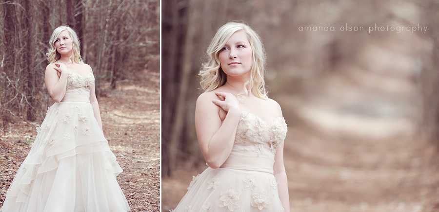 beautifulBrideDiptych