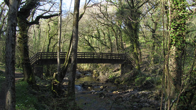 Footbridge over West Okement River