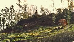 12 Castelo de Ubeiras (PK13,2)