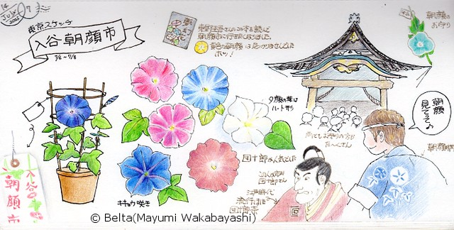2015_07_17_asagaoichi_01