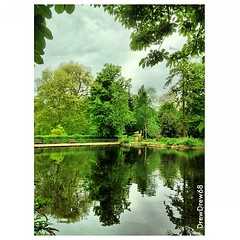 Reflections of greenery across water in Christchurch Park from a few days ago. #park #christchurchpark #ipswich #suffolk #greenery #reflections #water #pond #trees #clouds #foliage #green