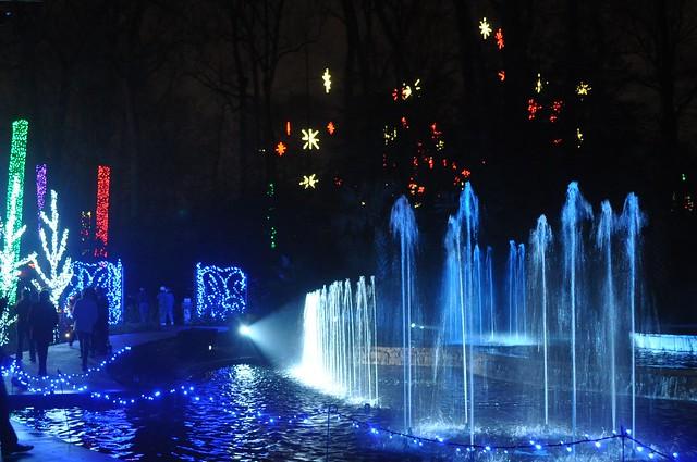 Christmas Light Atlanta Botanical Garden 2012 Flickr