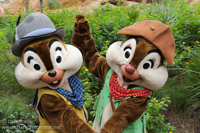 Grizzly Gulch Chip n Dale