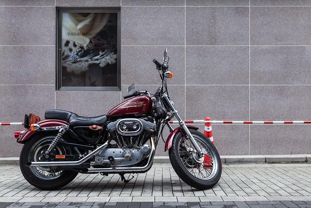 20130805_01_Harley-Davidson XL883