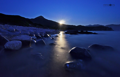 Capo Pecora Blue Moon