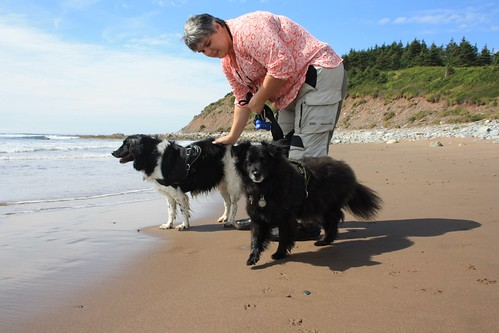 Dachary and the Dogs on the Beach