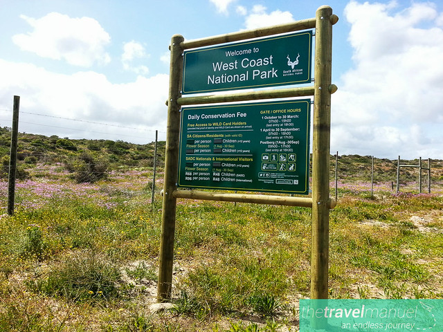 West Coast National Park and Jacobsbaai 2013-24
