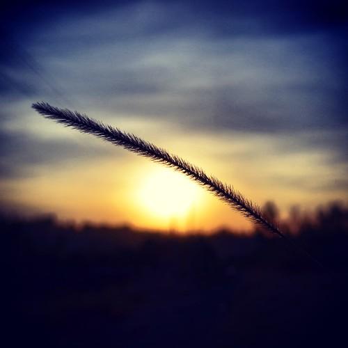 sunrise minimalism theriftvalley flickrandroidapp:filter=none