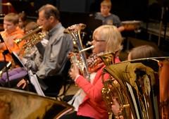 Lilla Brassbandfestivalen 2013