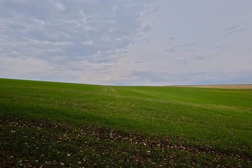 sky cloud france green landscape fuji plateau champs vert ciel nuage verte openfield hautemarne xe1 xpro1 xf14 fujixe1